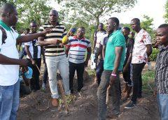 Photo de la formation sur l'itinéraire technique du sésame